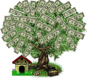 ada yang jual bibit pohon duit? Aku beli!